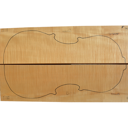 Flamed Maple   Cello back No.5