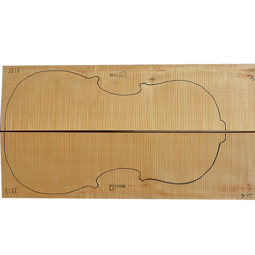 Flamed Maple | Cello back No.6