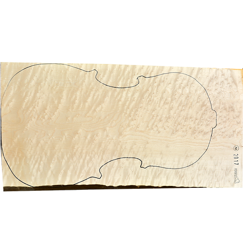 Birdseye Maple | Cello back No.1