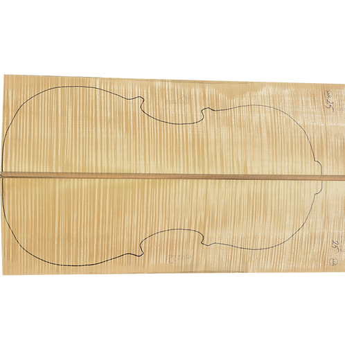 Flamed Maple | Cello back No.25