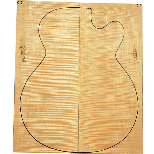 Archtop Jazz guitar back + sides No.11