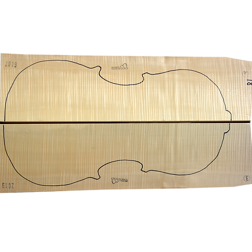 Flamed Maple | Cello back No.18