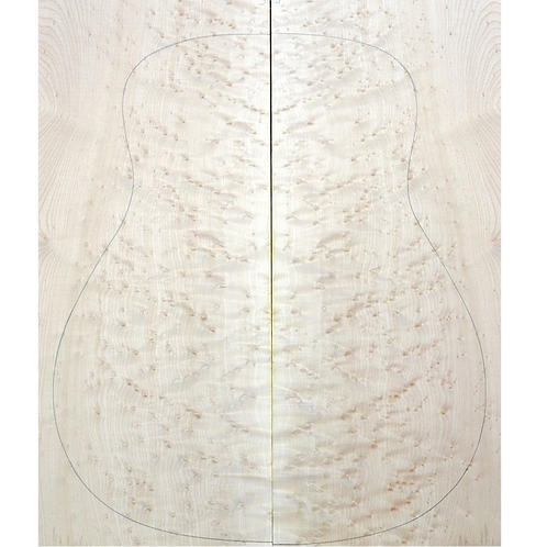 Birdseye maple | Acoustic Guitar AAA