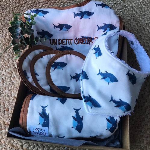 Coffret cadeau (disques nettoyants) Igor le Requin