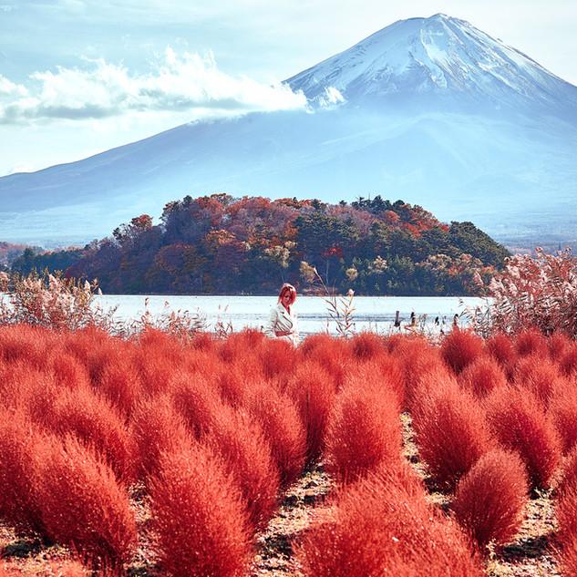 Fuji_IMG_9787.jpg