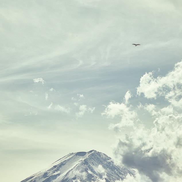 Fuji_IMG_9748.jpg