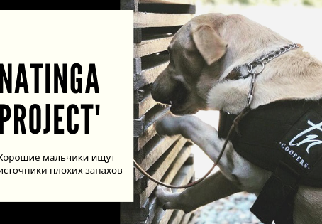 Natinga Project