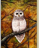 Greetings card - Wol.jpg