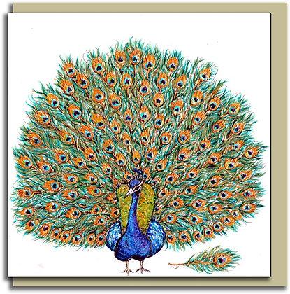 Eco Greetings card: Peacock