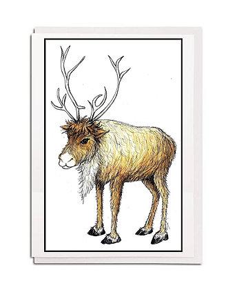 Christmas card: Traditional ~ Reindeer