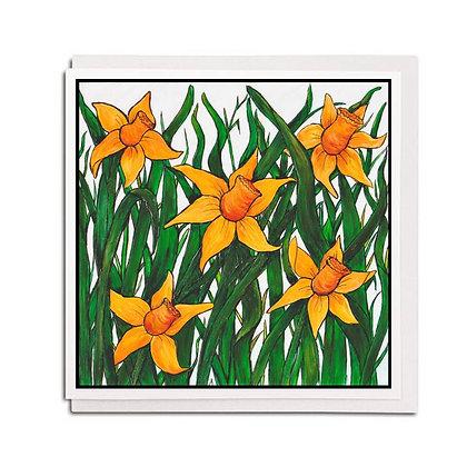 Greetings card: Daffodil Field