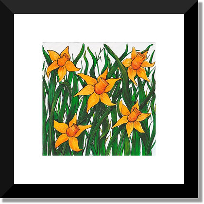 The Flower Collection: Daffodil Field