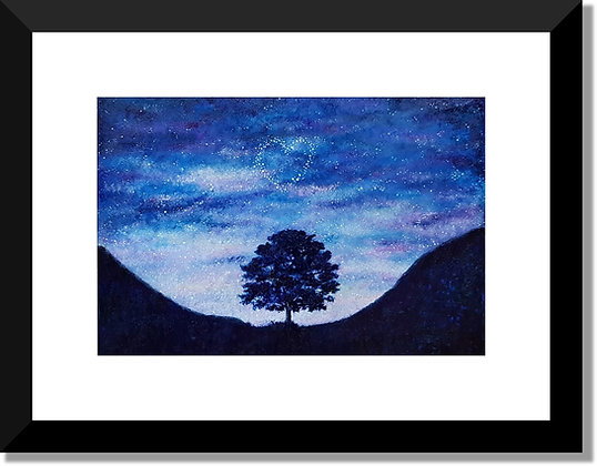 The North East Collection: Starry Sycamore