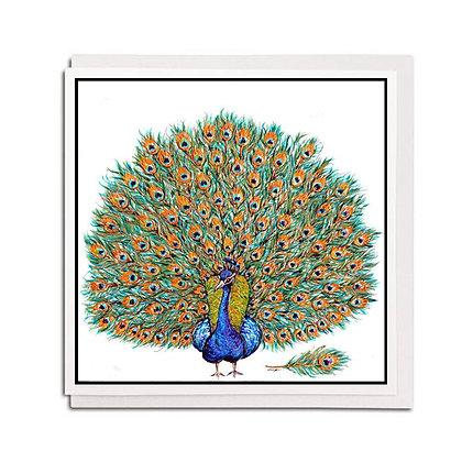 Greetings card: Peacock