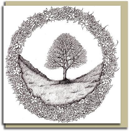 Eco Greetings card: Home ~ Sycamore Gap