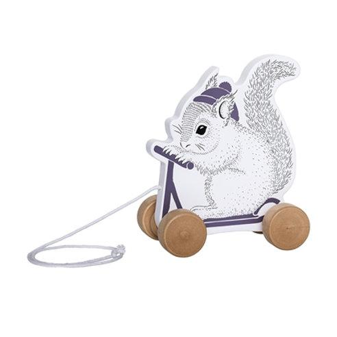 Ecureuil à balader