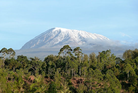 Mount Kilimanjaro Tanzani
