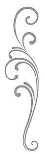 simple-scroll-clip-art-7TaKMryGc%20copy_