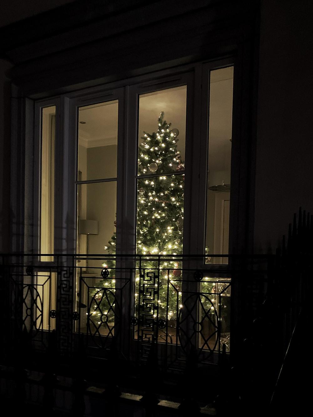 Ecofriendly christmas tree options