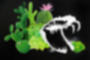 viper skull.jpg
