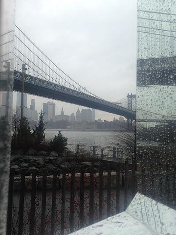 NY_Photo.jpg