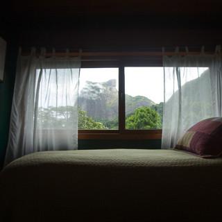 Suite Kiwi.jpg