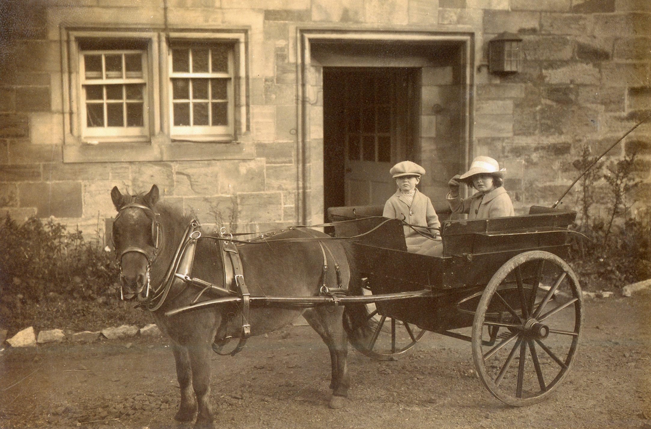 Horse and Cart at Norwood Park