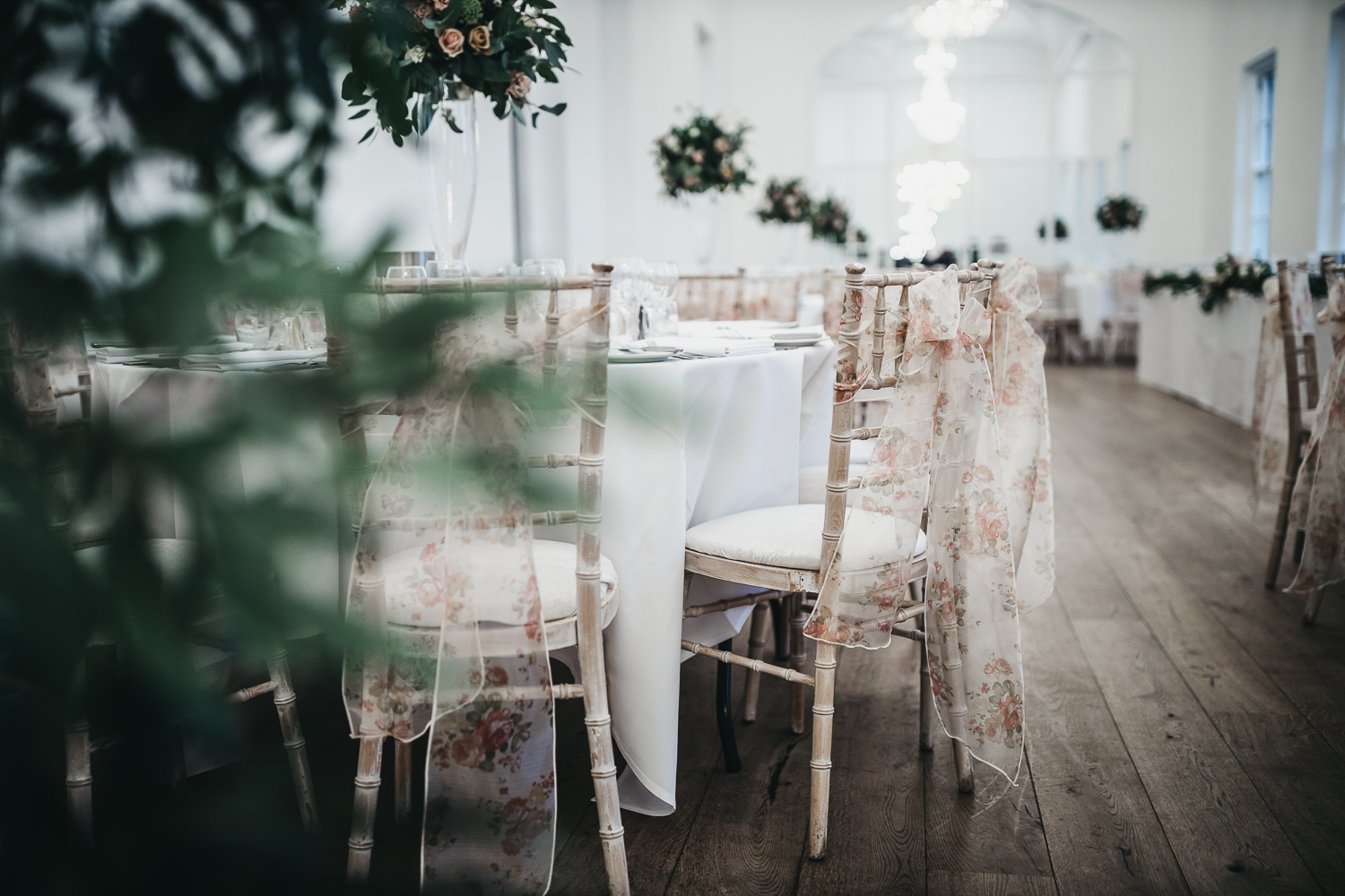 Chiavari Chairs in Norwood Park's Gallery