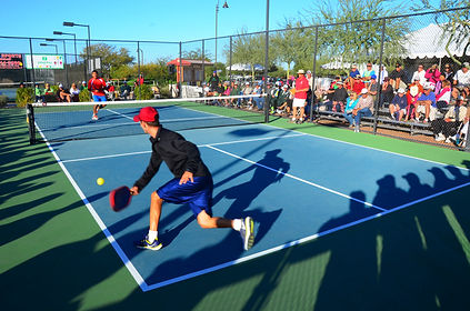 Competitive and Recreational Pickleball