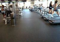 Indoor Fitness and Sports Flooring