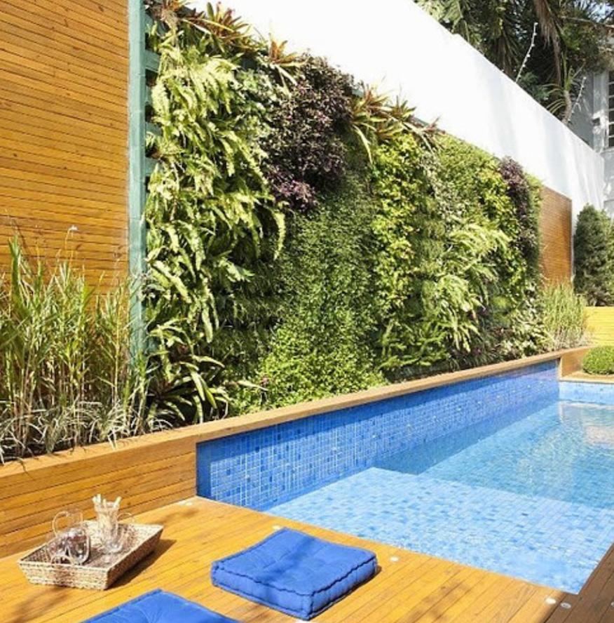 parede verde acompanha a piscina