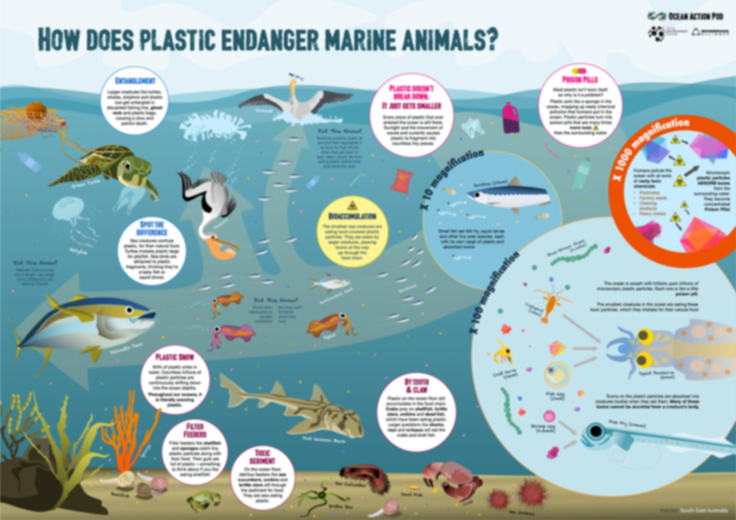How does plastic endanger marine animals