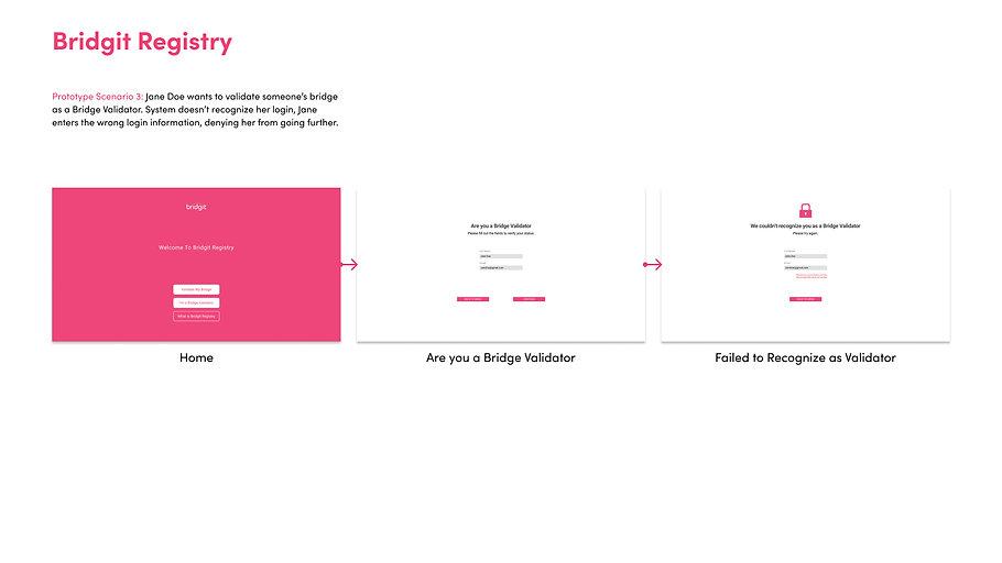 Bridgit Registry Prototype Scenario 3