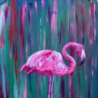 Flamingo Argentino