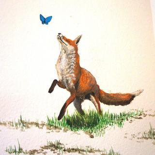 Fox & butterlfy