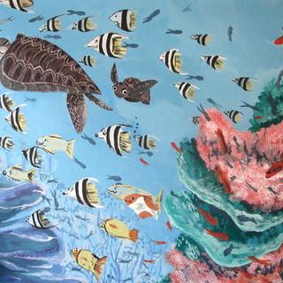 Corals, fish & turtles