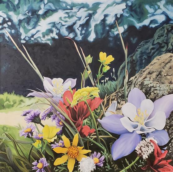 Colorado Wild Flowers 2019
