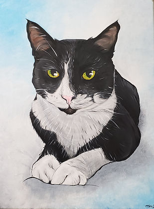 Black and White Cat Portrait.jpg