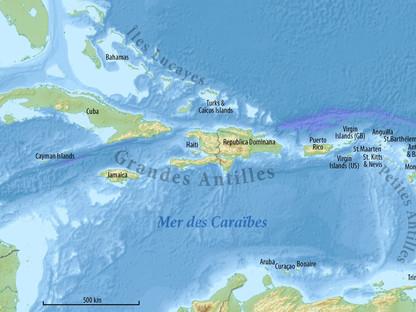 Espèces endémiques de Guadeloupe [checklist]