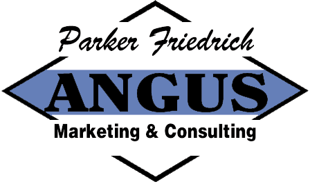 ANGUS Marketing & Consulting