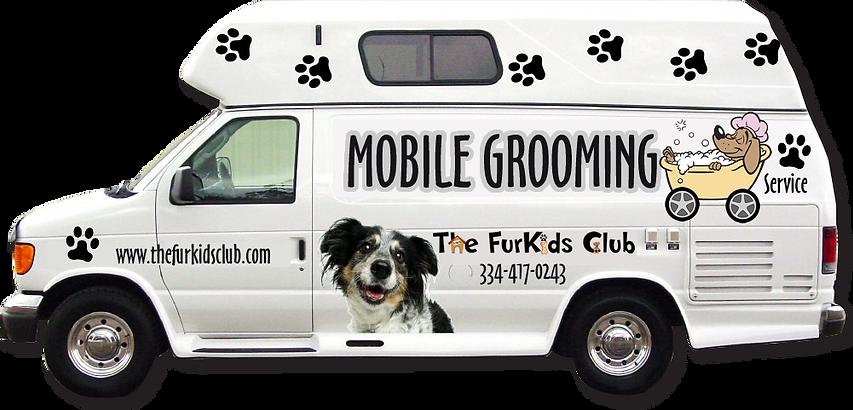 The Fur Kids Club