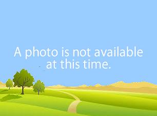 no_photo.png