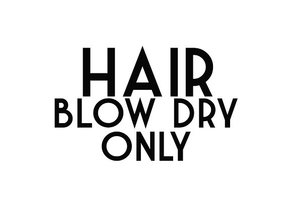 Hair Blow Dry Only