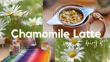 Chamomile Tea Herbal Latte - dairy + caffeine free