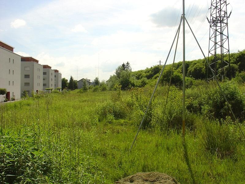 Rütiweid Land, Cham