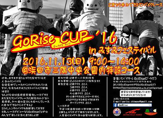 GoRise CUP HP