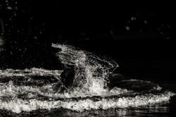 MO_Vodafone Paredes de Coura_Water-15