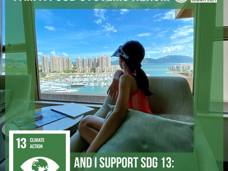 I am a #FoodSystemsHero and I support #SDG13!