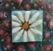 01 Encaustic Little Jewels Daisy.jpg