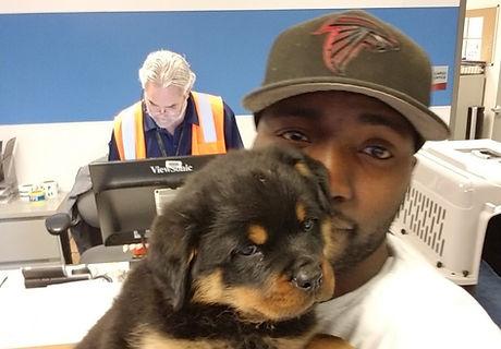 Butler Kennels Rottweilers Overseas Import